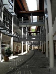 Un lycée bien trop vide © Hervé Moine - Philo Antilles 2007-2009
